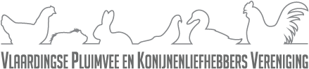 JongDierenDag 2020 @ Beekenkamp | Maasdijk | Zuid-Holland | Nederland