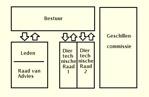 Organigram KLN